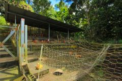 business-organic-farm-for-sale-13