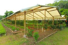 business-organic-farm-for-sale-18