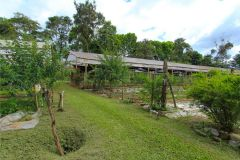 business-organic-farm-for-sale-24