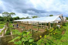 business-organic-farm-for-sale-4