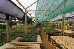 business-organic-farm-for-sale-6