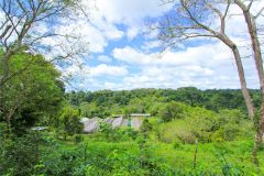23-acre-organic-farm-for-sale-in-Panama-1