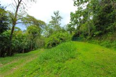 23-acre-organic-farm-for-sale-in-Panama-15
