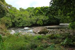 23-acre-organic-farm-for-sale-in-Panama-19
