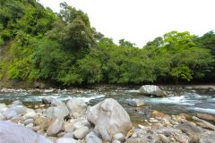 23-acre-organic-farm-for-sale-in-Panama-21