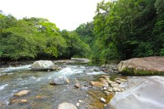 23-acre-organic-farm-for-sale-in-Panama-22