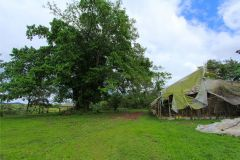 23-acre-organic-farm-for-sale-in-Panama-5