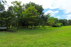 23-acre-organic-farm-for-sale-in-Panama-6